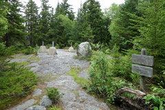 Rock Climbing Photo: Pine Mt summit