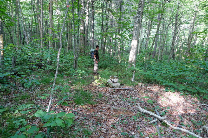 """Cairn to mark the beginning of the climbers trail.  (to """"Lost Boys area"""")"""