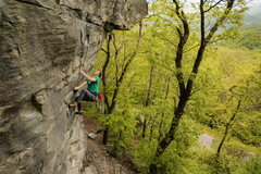 Rock Climbing Photo: Drew Hayes on Pigs in Zen (5.13a), The Dump, NC