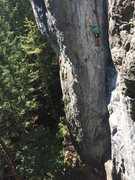 Rock Climbing Photo: Unknown climber nearing the top of the route. Phot...