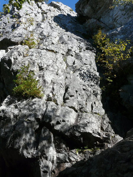 Rock Climbing Photo: Spar-en-O  5.4
