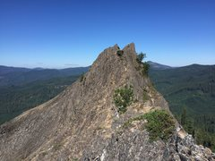 Rock Climbing Photo: standing on the summit after the last scramble to ...