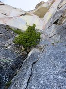 Rock Climbing Photo: Looking up from the base of Pitch 4. To access the...