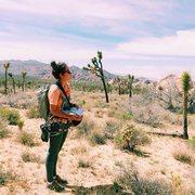 Rock Climbing Photo: Approach life
