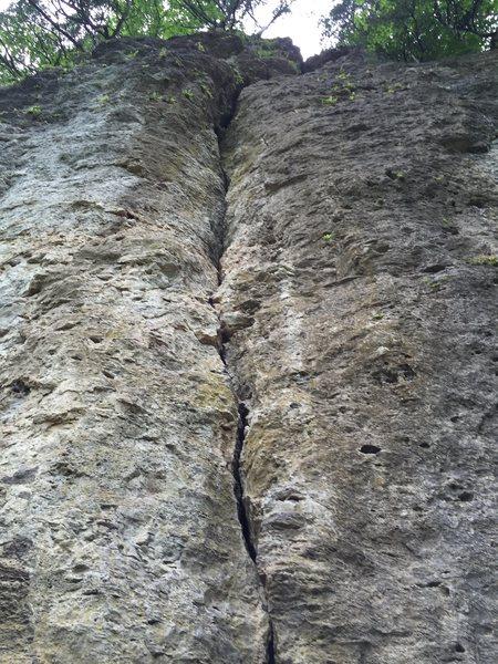 Rock Climbing Photo: Looking up.