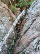 Rock Climbing Photo: High quality natural protection at the top of p4. ...