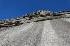 Rock Climbing Photo: Consolation Prize, P3