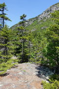 Rock Climbing Photo: Start of climbers trail. After the steep part of t...
