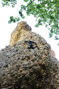 Rock Climbing Photo: really cool looking line. climbs nice too