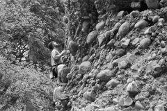 Rock Climbing Photo: chris, route finding