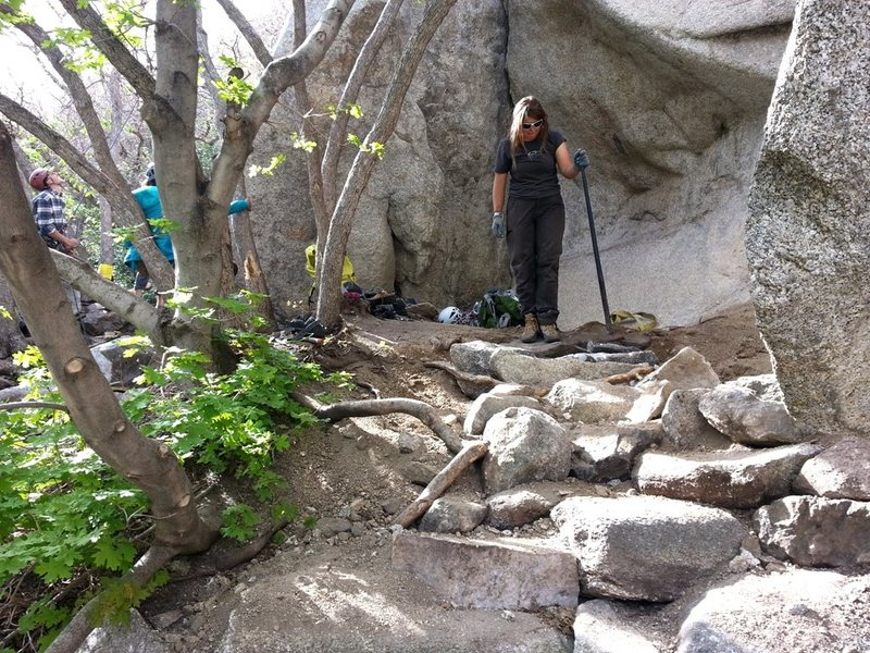 Rock Climbing Photo: Lindsay