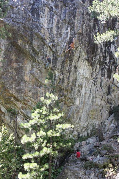 Vince applying some farm boy strength on Hand Book of the Recently Decreased 12c. B-Word Wall, Bowman Valley, CA.