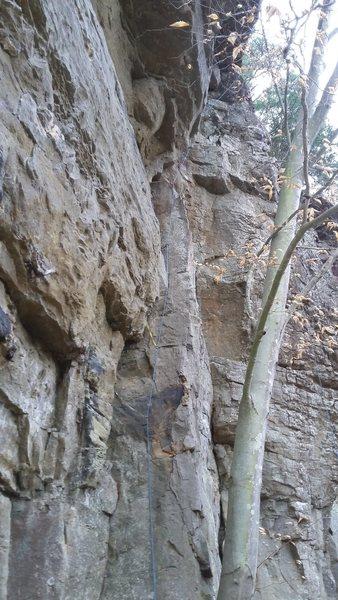 Rock Climbing Photo: Green Hornet