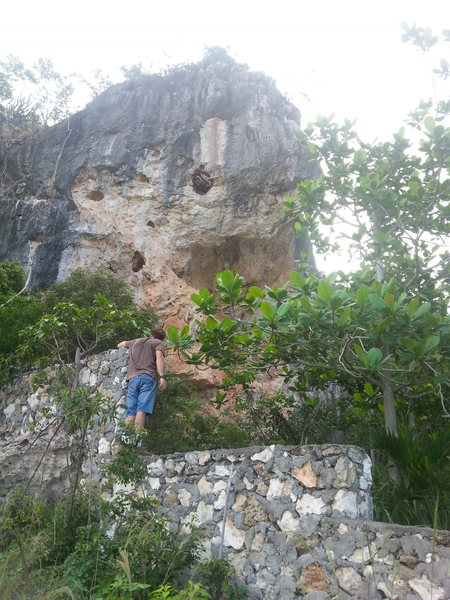 Rock Climbing Photo: Pelican pillars, wasps nest...