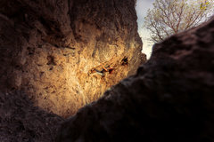 Rock Climbing Photo: Natasha mid crux while making the 1st ascent of Sn...