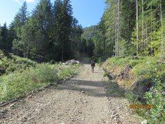 Rock Climbing Photo: Walking the logging road to Northwood Bluffs.