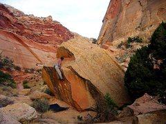 Rock Climbing Photo: Capitol Gorge Boulders