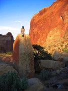Rock Climbing Photo: The Necco Wafer