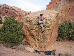 Rock Climbing Photo: Burly yet delicate