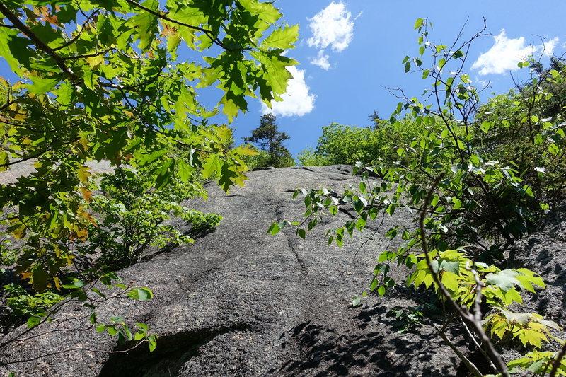 Rock Climbing Photo: Daniel Webster Highway: P1