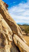 Rock Climbing Photo: Trashcan solo.