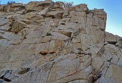 Rock Climbing Photo: upper section of Methuselah + Odysseus routes in R...