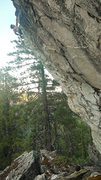 Rock Climbing Photo: Video screenshot of Nic on the FA. This route is s...
