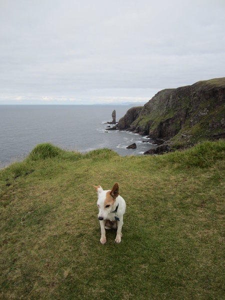 Its about an hours walk to the sea Stack ..Old man of Stoer