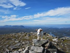 Rock Climbing Photo: Bess on Quinag