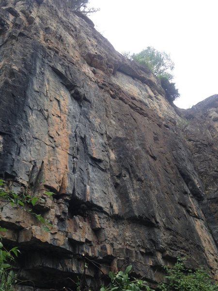Rock Climbing Photo: Born In The U.S.A. loosely follows the seam up to ...