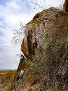Rock Climbing Photo: Steena mid-way through Aid Climb.