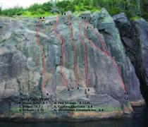 Rock Climbing Photo: Jellyfish wall