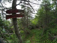 Rock Climbing Photo: Spirit and Jelly fish path