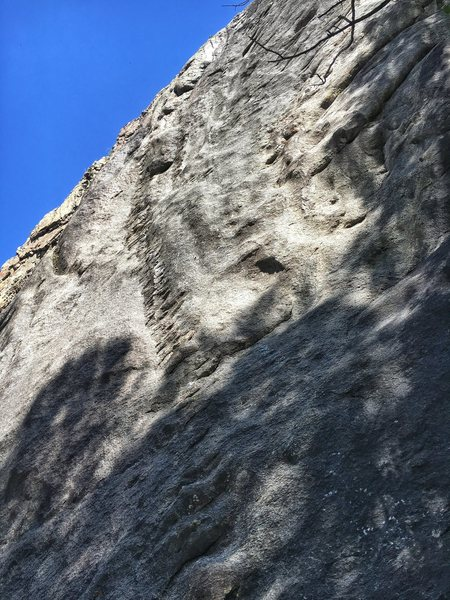 The super cool dike on 'The Zipper' (12c), one of the most interesting rock features I've encountered on The Ophir Wall.