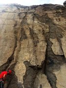 Rock Climbing Photo: Golden Beak follows the rope up the seam and then ...