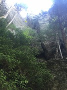 Rock Climbing Photo: The Reaper. White birch goes up the crack just beh...