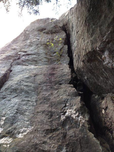 Rock Climbing Photo: Girthy