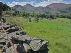 Rock Climbing Photo: Heather in Bloom .. Causey Pike .. Newlands Valley