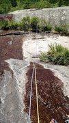 Rock Climbing Photo: A Bit Too Short: Pwet