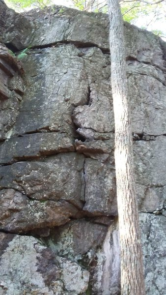 Rock Climbing Photo: View of route from the ground.