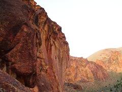 Rock Climbing Photo: Sarah on Dung Beetle