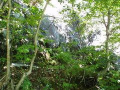 "Rock Climbing Photo: Small dirt ledge...start of ""Lead Poisoning&q..."