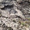Climbers on P1 of Black Gold. 4 others at the start of [Solid Gold, used to access] Playin&@POUND@39@SEMICOLON@ Hooky.