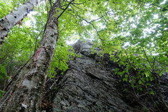 Rock Climbing Photo: The Apron, start
