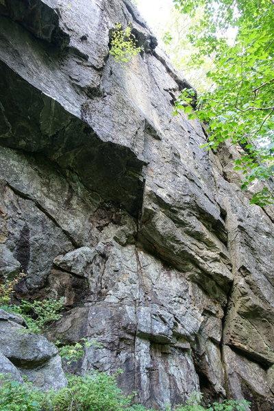 Rock Climbing Photo: Magnum