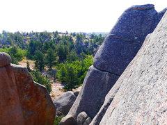 Rock Climbing Photo: Mr. Pickles Learns to Swim climbs a deep chimney i...