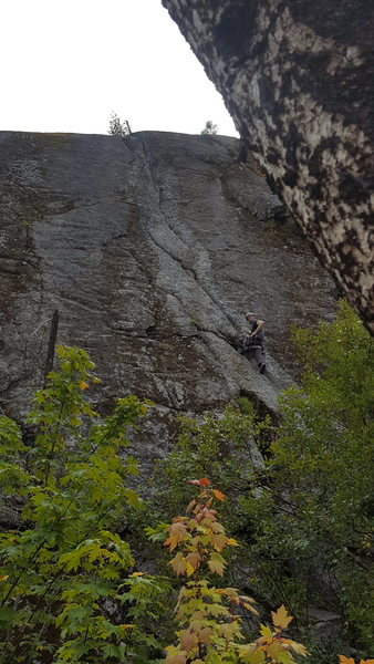 First Trad Lead