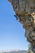 Rock Climbing Photo: Steve Cox sending Jagged Sky (5.12a)