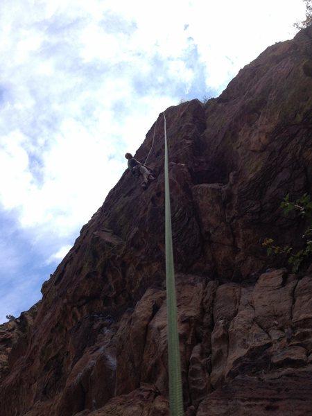 Sunset Boulevard top rope