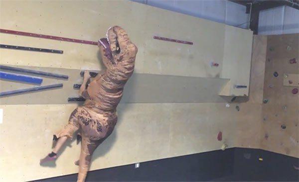 T Rex Training